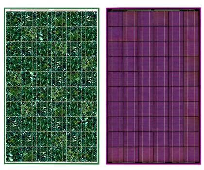 Farvede solcellepaneler